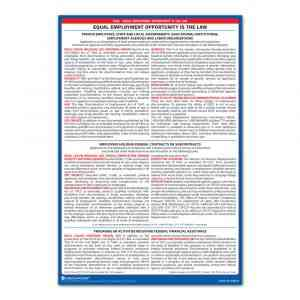 EEOC Large Print Poster