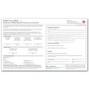 OSHA Form 300A Packet