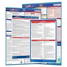 New Business Labor Law Poster Set
