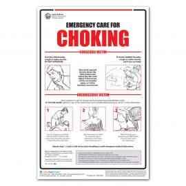 Illinois Choking Poster
